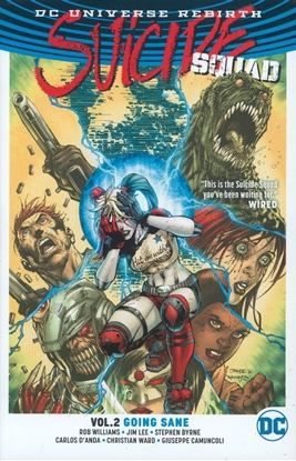 Picture of SUICIDE SQUAD TP VOL 02 GOING SANE (REBIRTH)