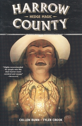 Picture of HARROW COUNTY TP VOL 06 HEDGE MAGIC (C: 0-1-2)