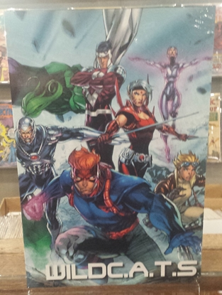 Picture of ABSOLUTE WILDCATS BY JIM LEE HC