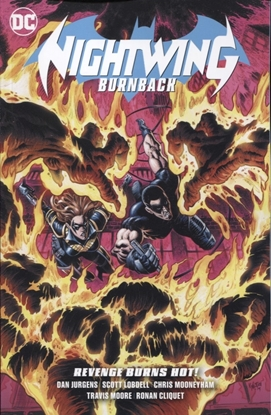 Picture of NIGHTWING BURNBACK TP
