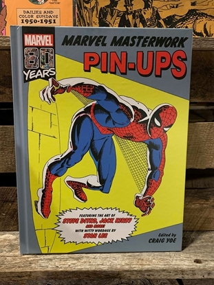 Picture of MARVEL MASTERWORKS PIN-UP HC