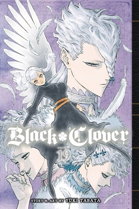 Picture of BLACK CLOVER GN VOL 19