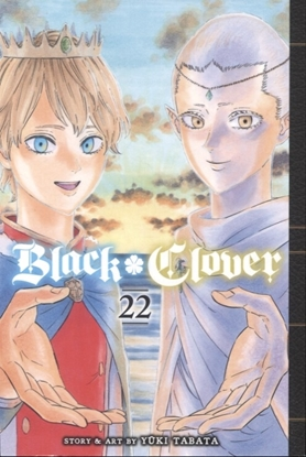 Picture of BLACK CLOVER GN VOL 22