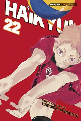 Picture of HAIKYU GN VOL 22