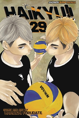 Picture of HAIKYU GN VOL 29