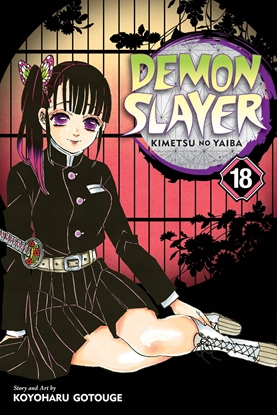 Picture of DEMON SLAYER KIMETSU NO YAIBA GN VOL 18
