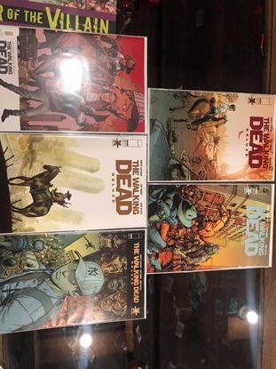 Picture of WALKING DEAD DELUXE EDITION #2 COVER A B C D E SET