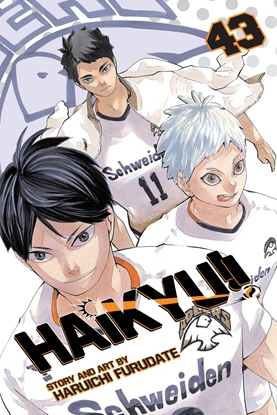Picture of HAIKYU GN VOL 43