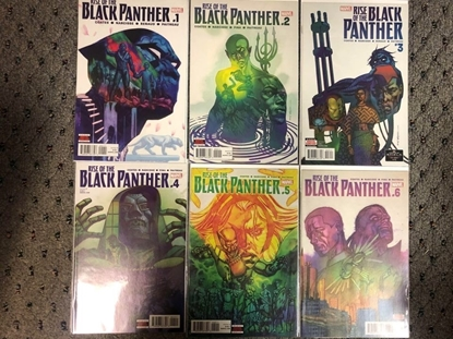 Picture of RISE OF THE BLACK PANTHER (2018) #1 2 3 4 5 6 / 1ST PRINT SET / COATES NM