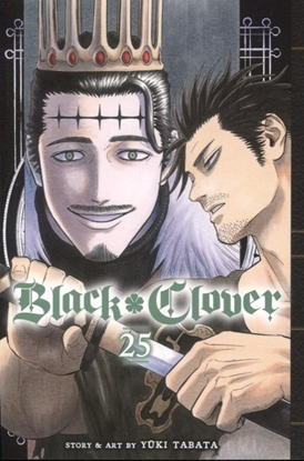 Picture of BLACK CLOVER GN VOL 25